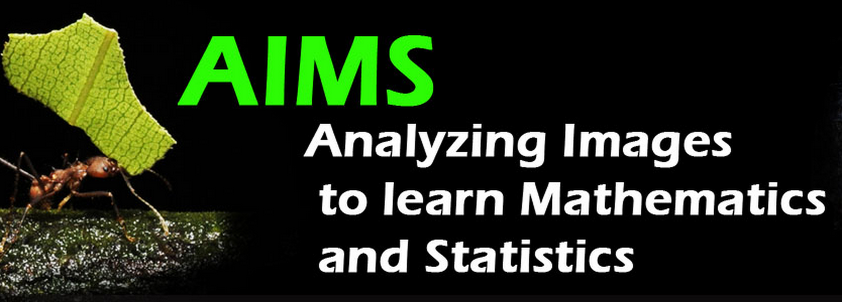 AIMS: Analyzing Images to learn Mathematics and Statistics group image