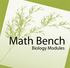 Building mathematical intuition with online MathBench Biology Modules group image
