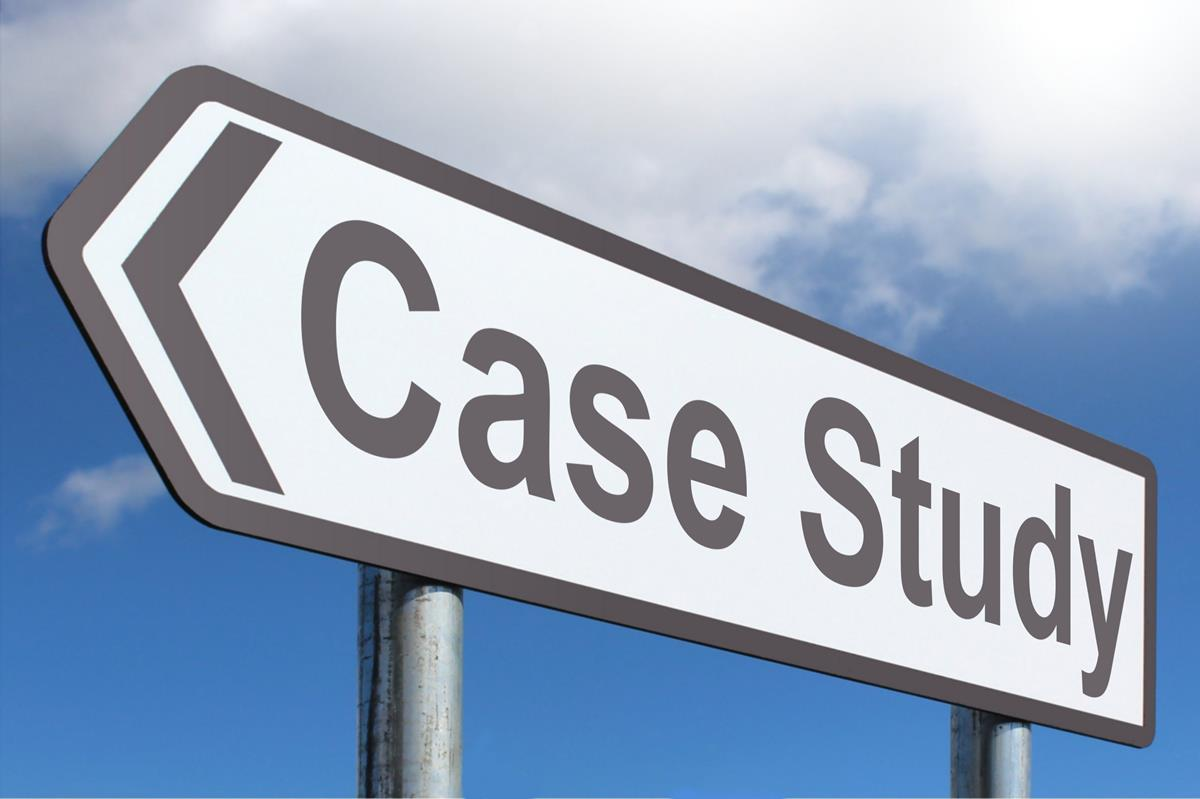 Making the Case Logo