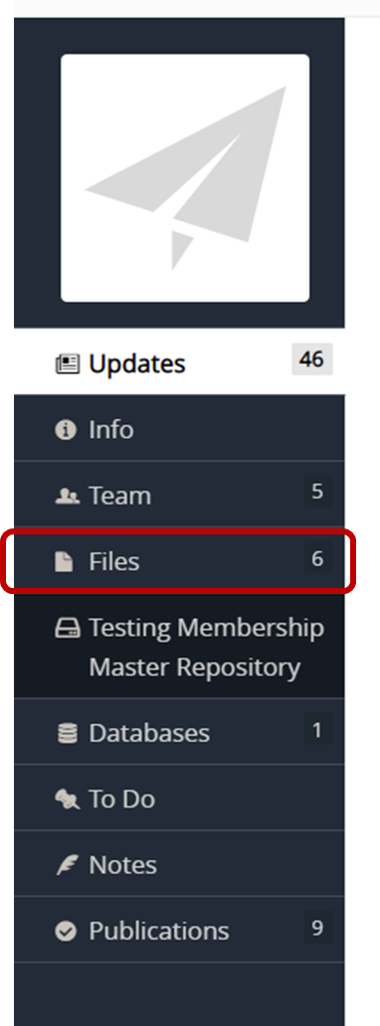 project menu with Files highlighted