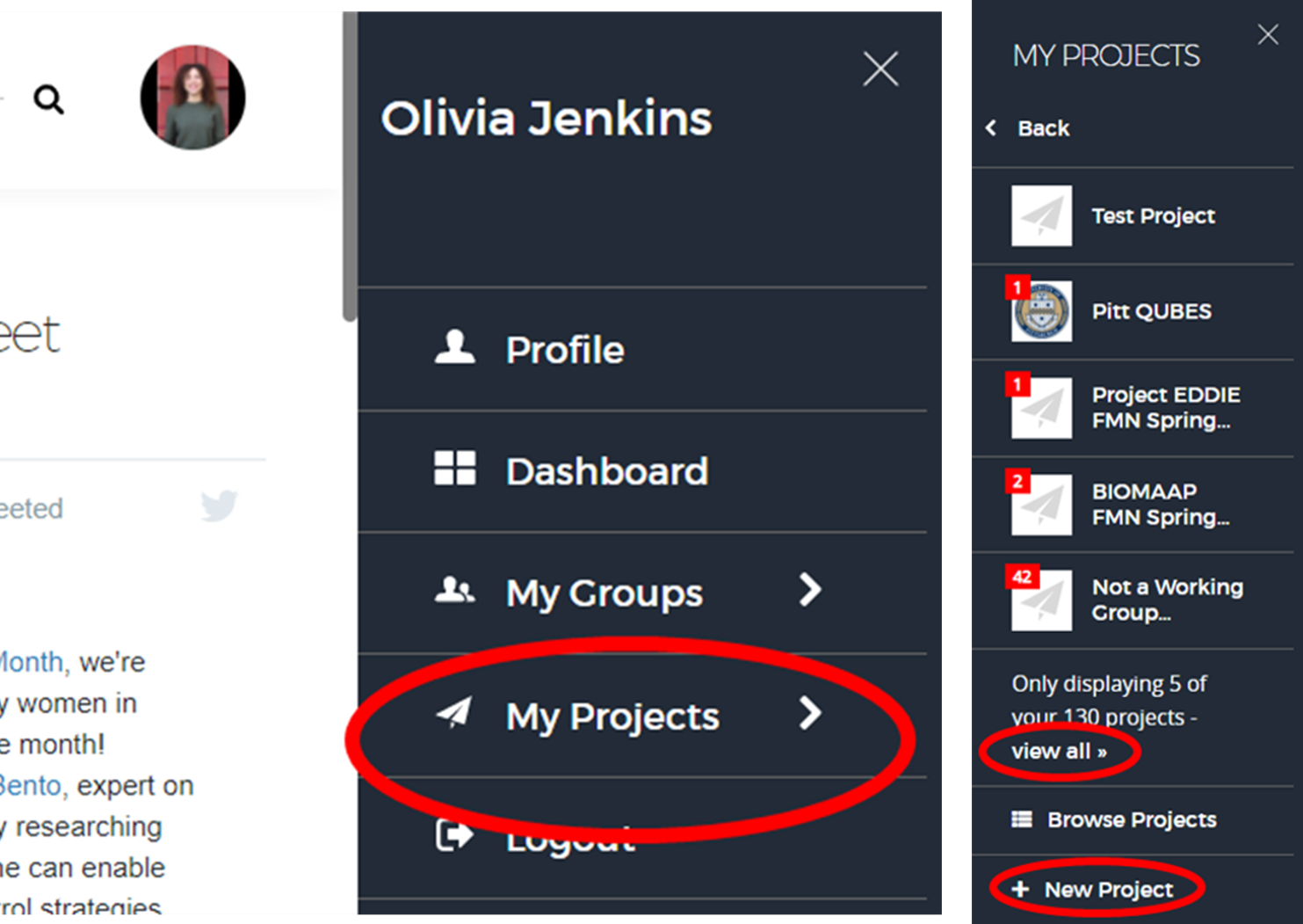 """An open mini dashboard with """"My projects"""" highlighted alongside the project module open in the mini dashboard with """"View all"""" and """"New Project"""" highlighted."""