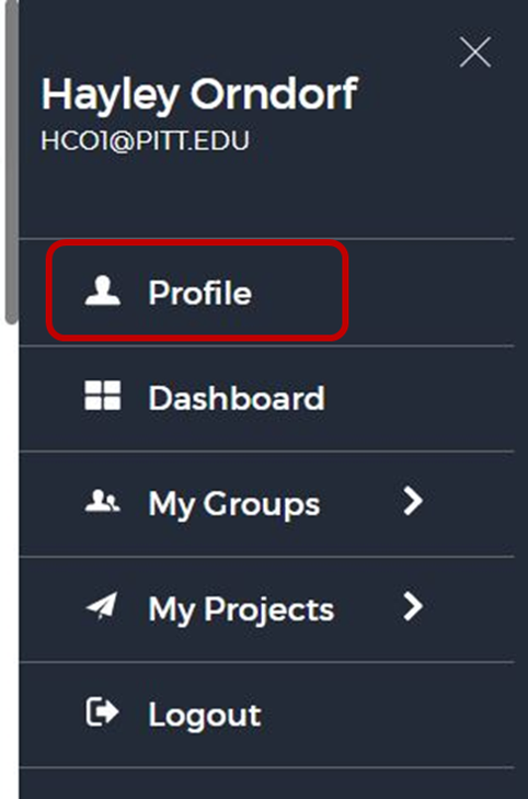 mini dashboard with profile highlighted