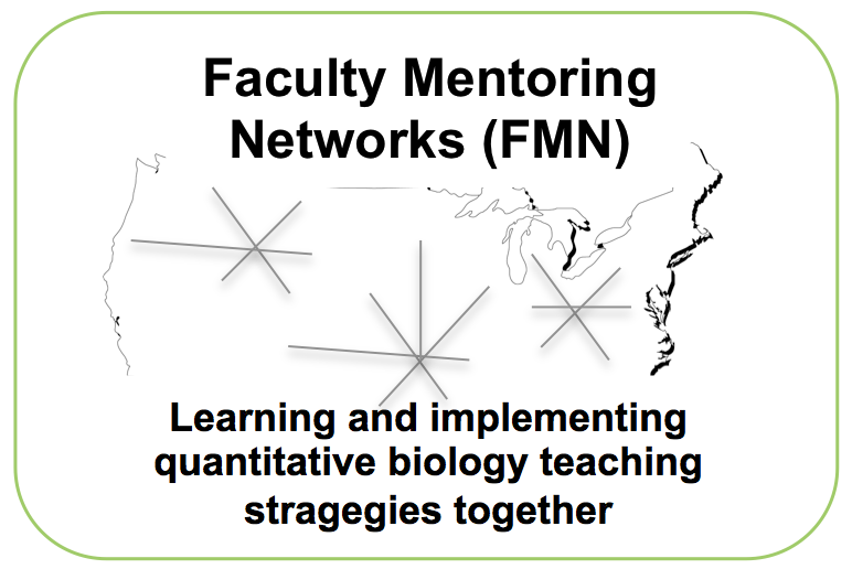 Faculty Mentoring Networks