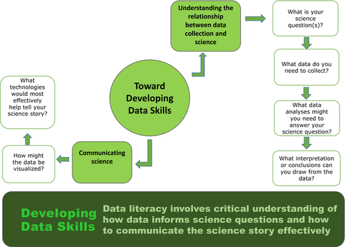 Developing Data Skills Figure