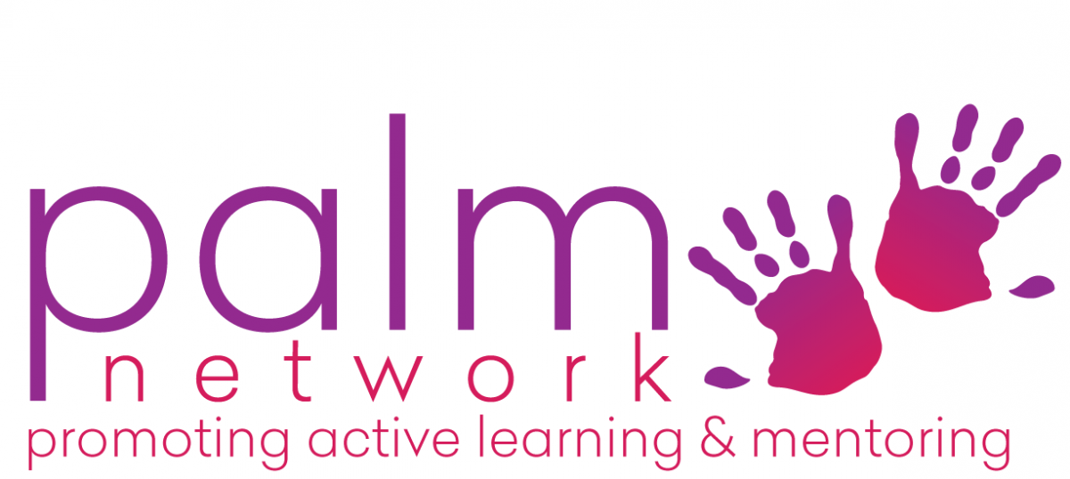 PALM Network Logo