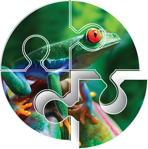 life discovery conference logo
