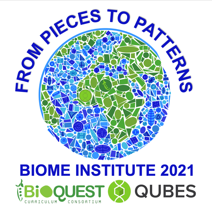 From pieces to patterns: BIOME Institute 2021 BioQUEST and QUBES