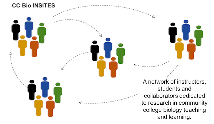 Diagram of CC Bio INSITES Network Connections
