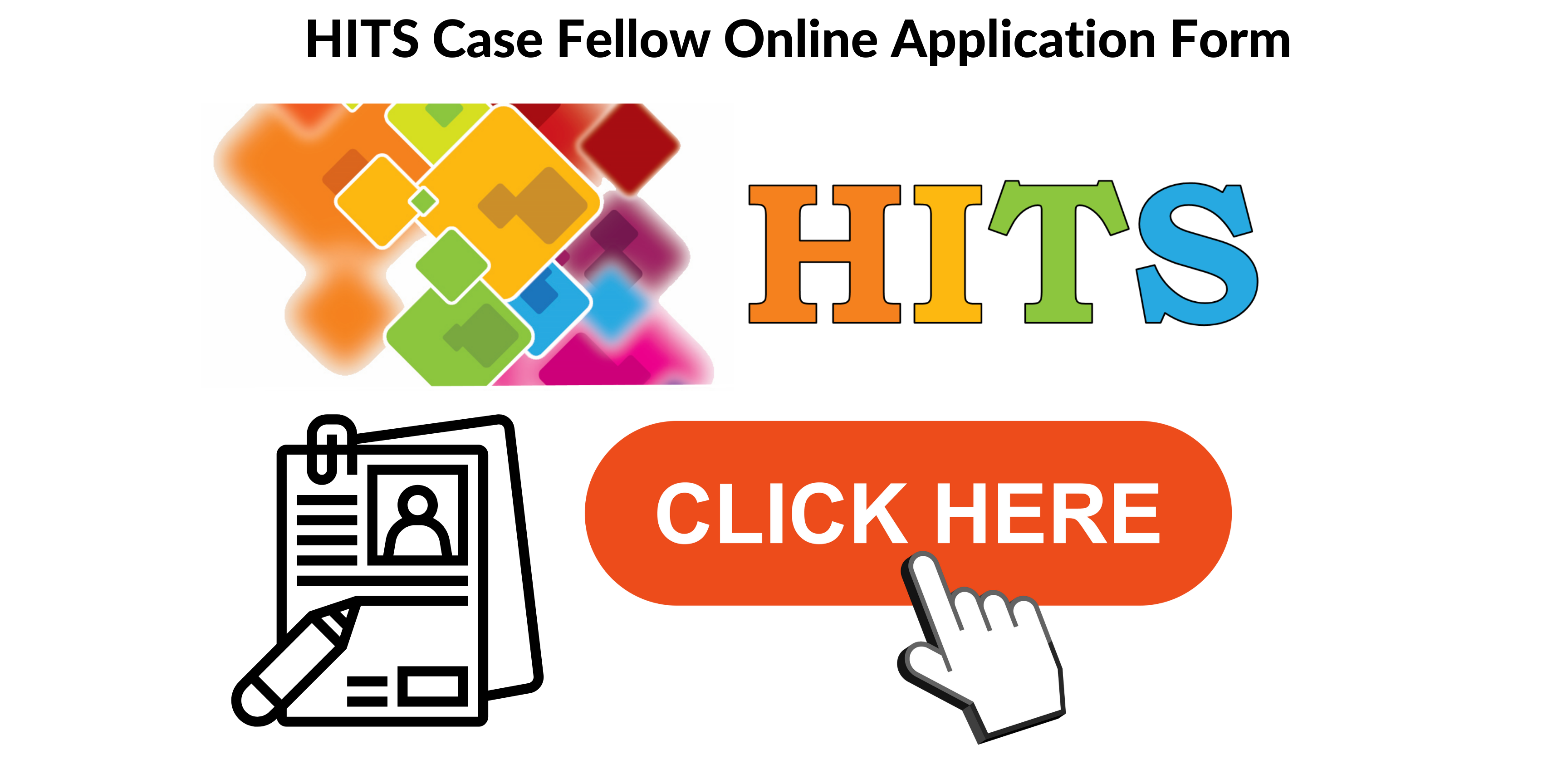 HITS Case Fellow Online Application Form