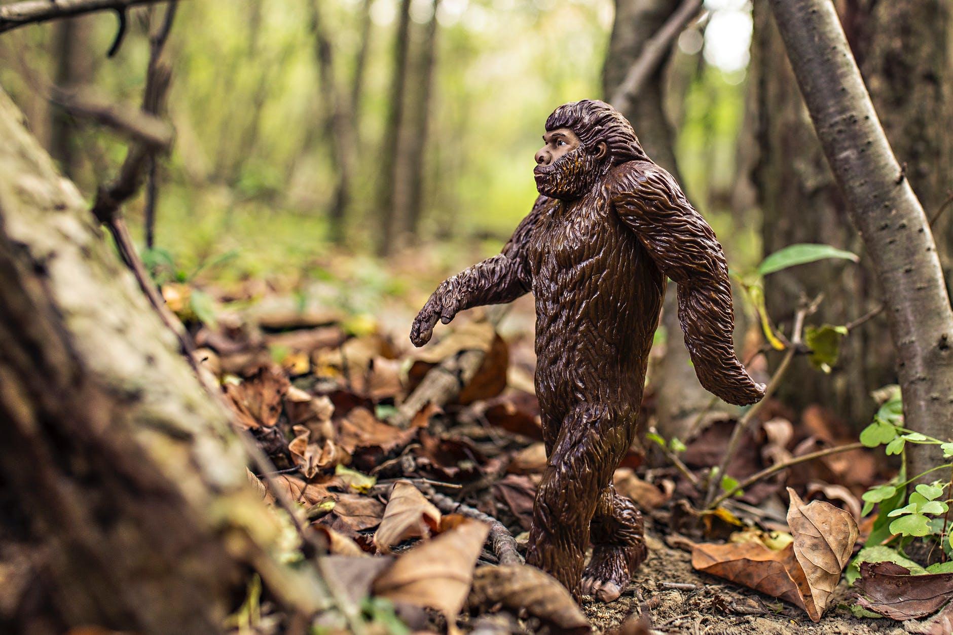 bigfoot walking through the woods