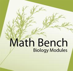 MathBench logo
