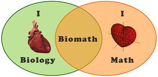 biomath heart model