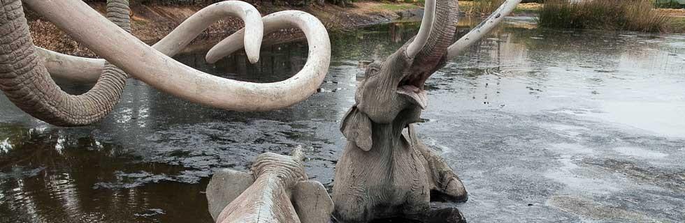 elephants in tar pits