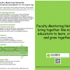 Faculty Mentoring Networks: Community Professional Development for the Digital Age