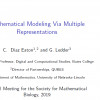 Mathematical Modeling via Multiple Representations