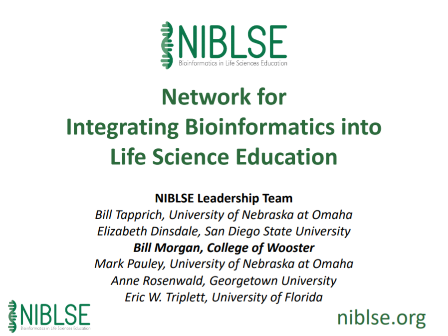Network for Integrating Bioinformatics into Life Sciences Education (NIBLSE): Recent Activities