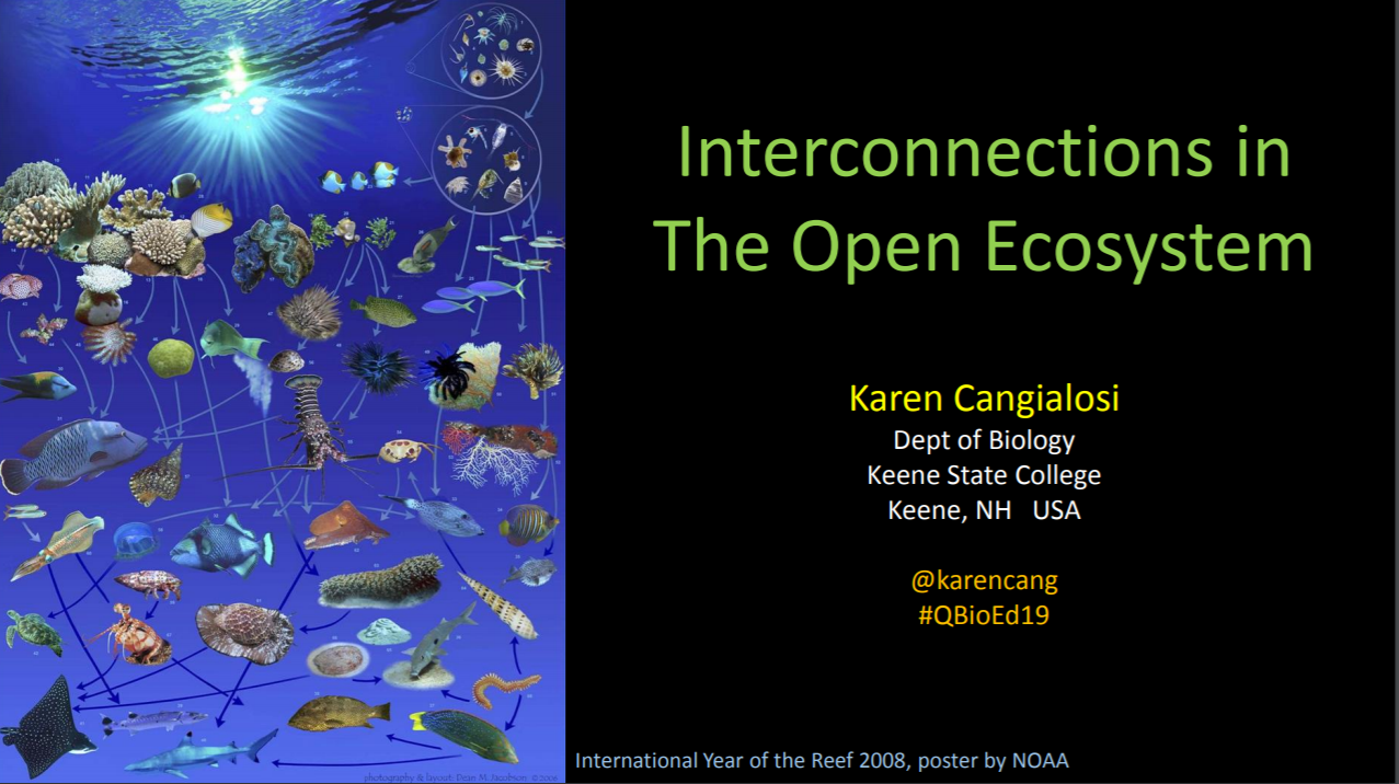 Interconnections in The Open Ecosystem