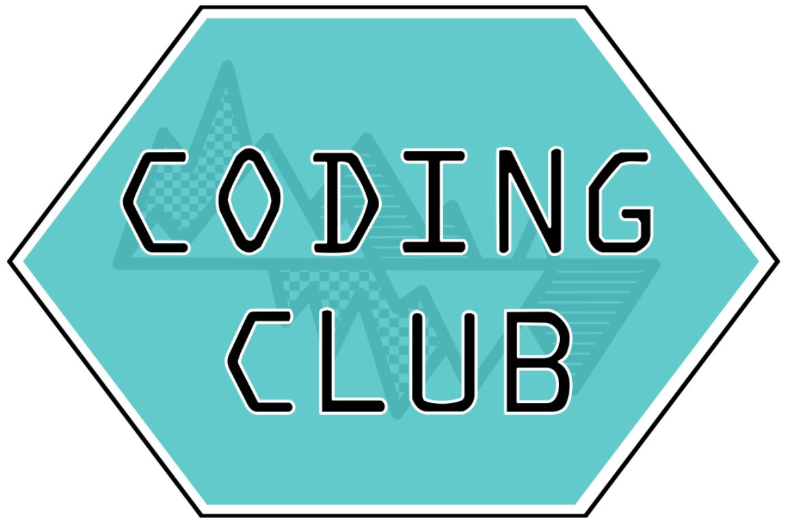 Coding Club: A Positive Peer-Learning Community