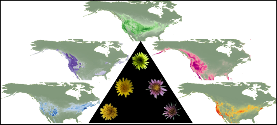 Using Digitized Collections-Based Data in Research: A Hands-On Crash Course in Ecological Niche Modeling