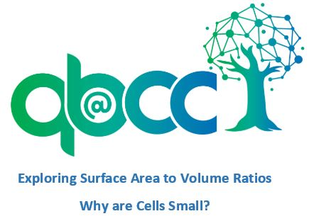 Why are Cells Small? Surface Area to Volume Ratio
