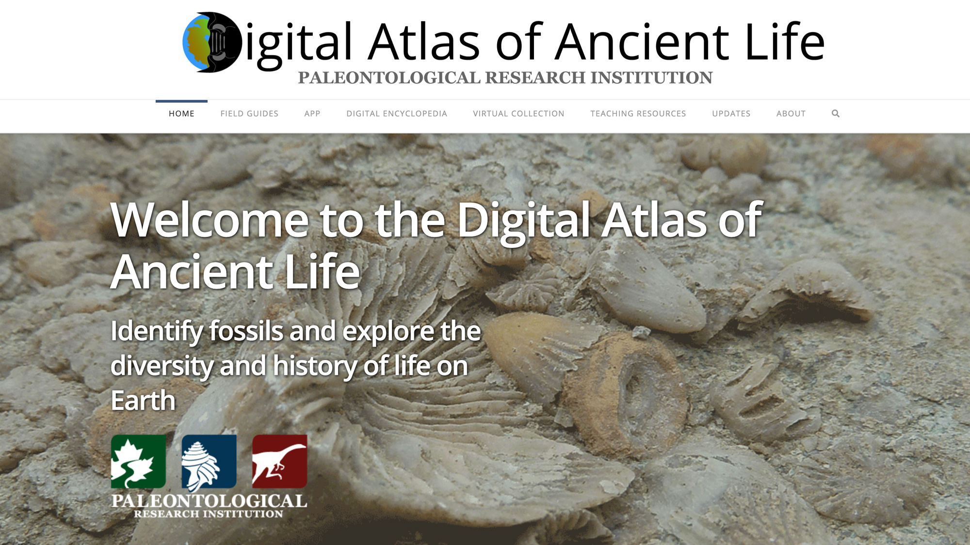 Digital Atlas of Ancient Life | Exploring the Diversity and History of Fossil Life
