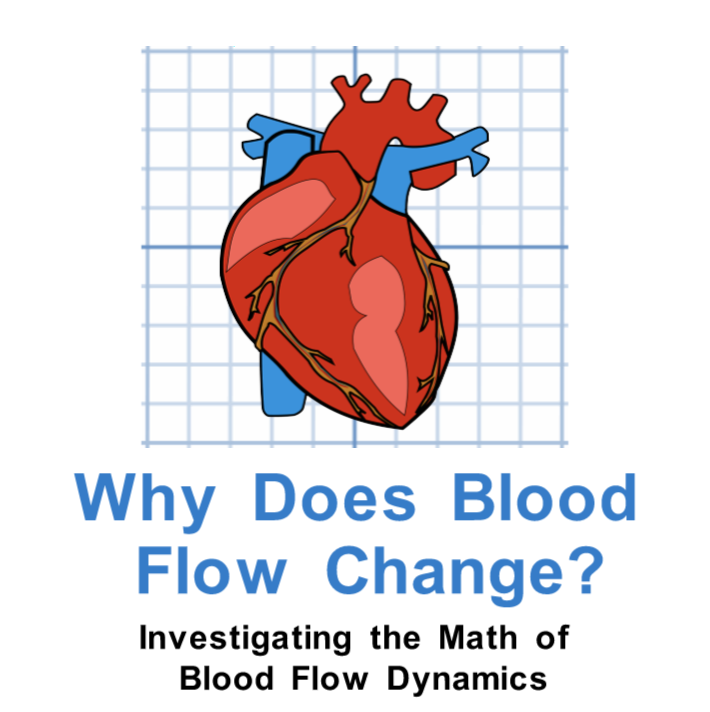 Why does Blood Flow Change?  Investigating the Math of Blood Flow Dynamics