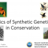 Conservation and Synthetic Genetics.png