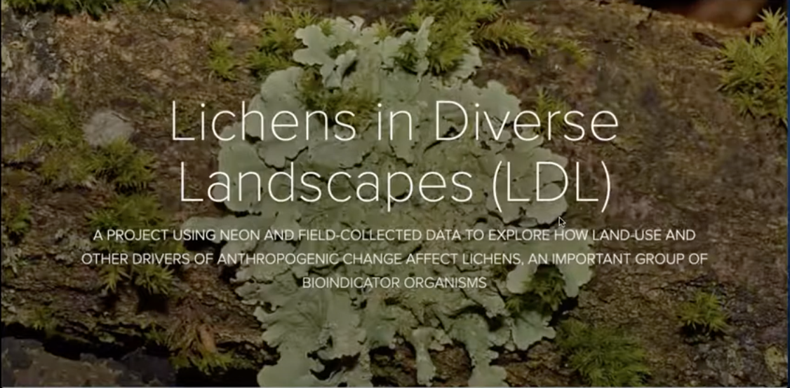 Lichens in Diverse Landscapes: EREN-NEON Flexible Learning Project