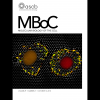 mboc.2018.29.issue-21.cover.jpg